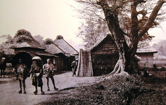 NamamugiVillage 1