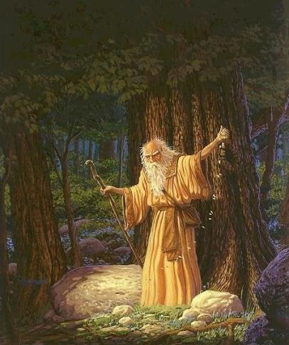 druid-zrodlo-celtic-heroes-com