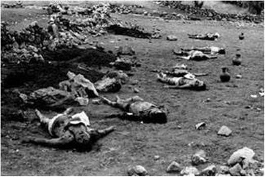 Parsley-Massacre-Dominican-Republic 1