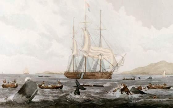 Katastrofa statku wielorybniczego Essex 1820
