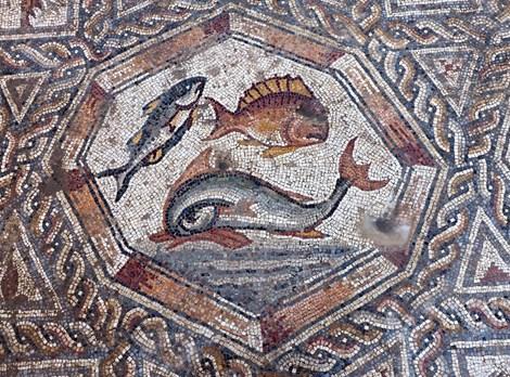 Ryby mozaika izrael