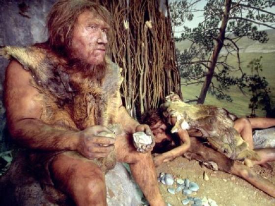 france-museum-quinson-neanderthal-interbreeding