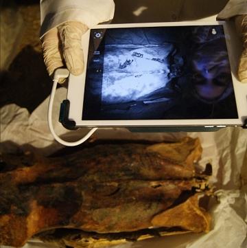 Anthropologist-Ghada-Darwish-Al-Khafif-uses-infrared-imaging-to-examine-tattoos-on-mummys-back 1