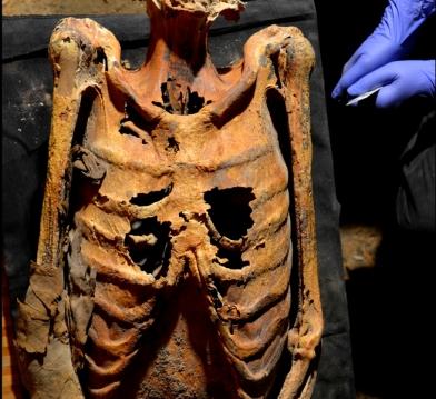 Tattooed-Deir-el-Medina-mummy-1300-1070-BC