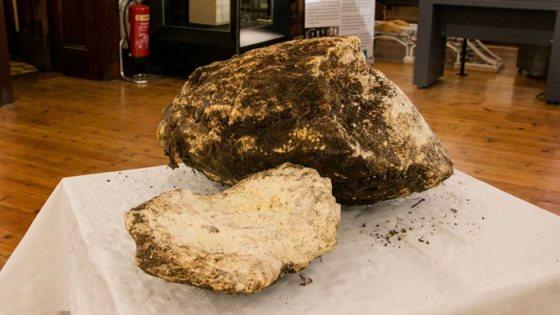 Bryla masla sprzed 2 tys lat 3