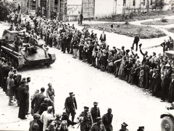 Chełm 1944 1 Armia Polska