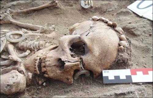 szkielet mezyczny obraczka Bajkal kulturta glaskowska