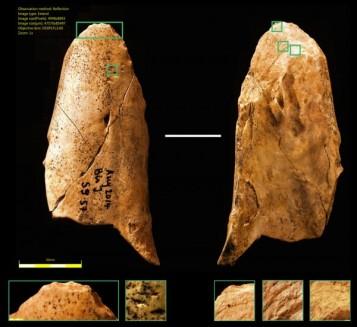 Kościane narzędzie z Grotte du Bison. Fot. University of Montreal – Luc Doyon