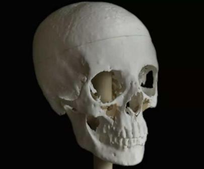 model-czaszki-meritamun