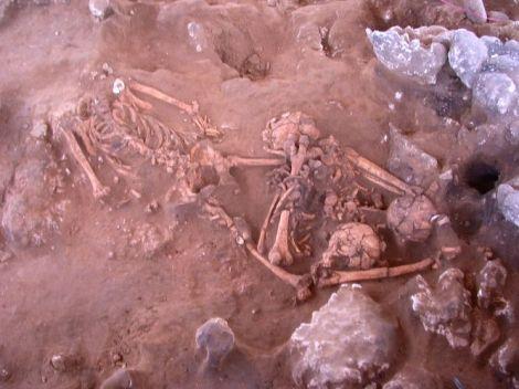 szkielet-z-wypsy-vanuatu-anu