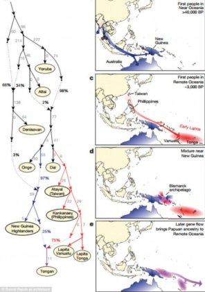 zasiedlenie-wysp-polinezyjskich-david-reich-nature