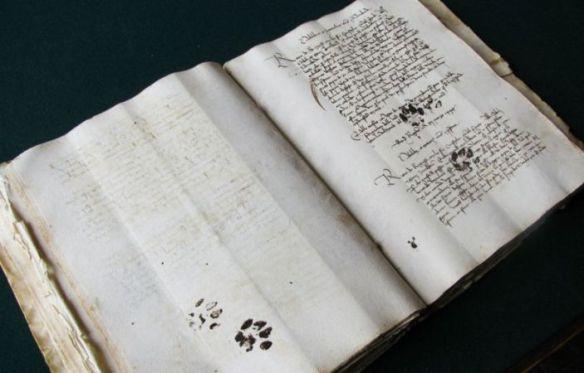 slady-kocich-lap-na-manuskrypcie-z-1445-roku-1