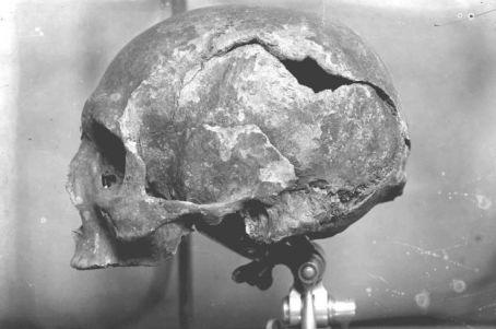 czaszka-magnusa-erlendssona
