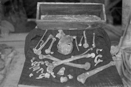 czaszka-o-kosci-magnusa-erlendssona