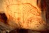 Malowidło naskalne przedstawiające hienę sprzed ok. 30 tys.lat
