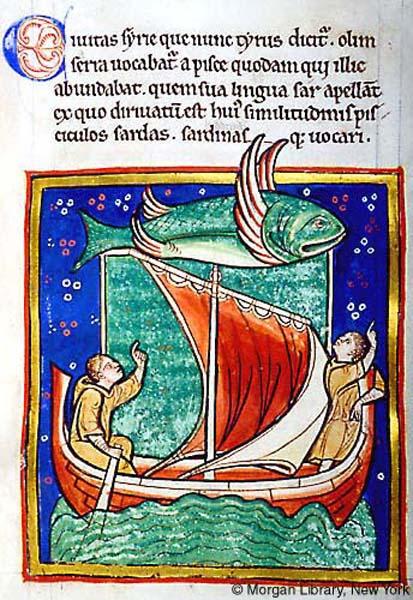 Latająca ryba z średniowiecznego bestiariusza z 1185 roku