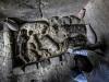 W Egipcie odkryto mumie kotów iskarabeuszy